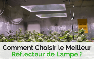Guide : Comment Choisir le Meilleur Réflecteur de Lampe ?