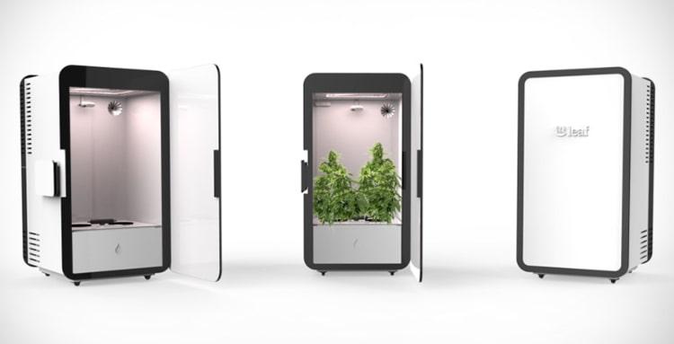Photos d'un Placard pour Cultiver du Cannabis dans un Petit Espace