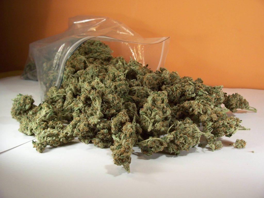 Cannabis en pochon