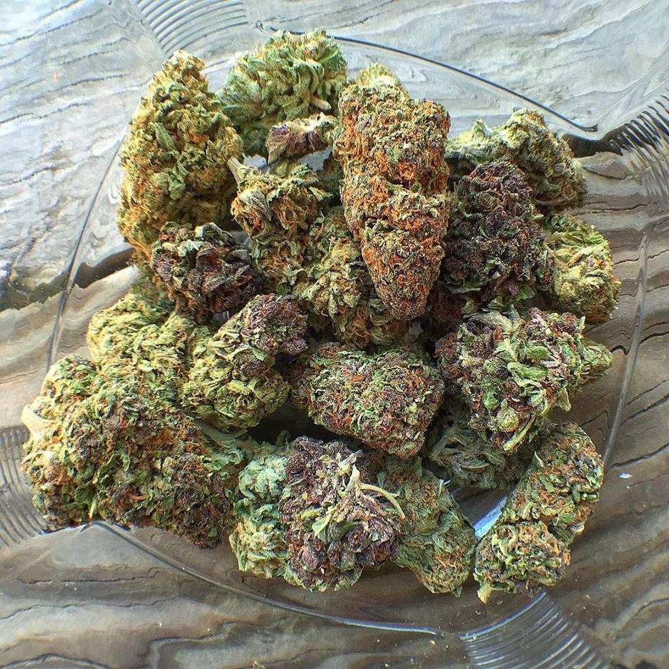 Herbe Verte de Culture de Cannabis en Intérieur
