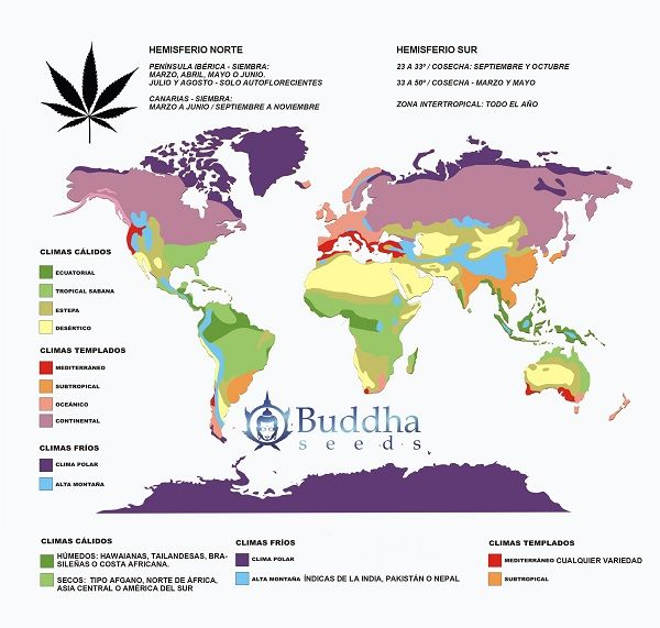 Carte des Climats pour Culture de Cannabis en Hiver en Extérieur