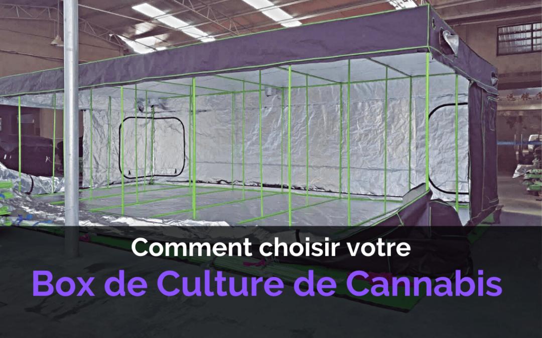 Box de Culture Indoor de Cannabis