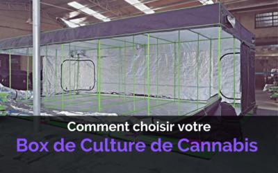 Comment Choisir votre Box de Culture de Cannabis Indoor ?
