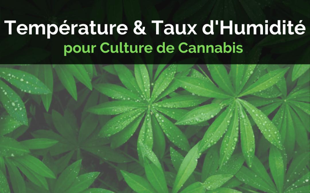 La Température et le Taux d'Humidité pour Culture de Cannabis Indoor
