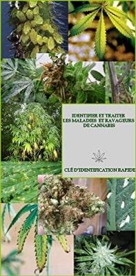 Identifier Et Traiter Les Maladies Et Ravageurs De Cannabis, De Miled Mehdi