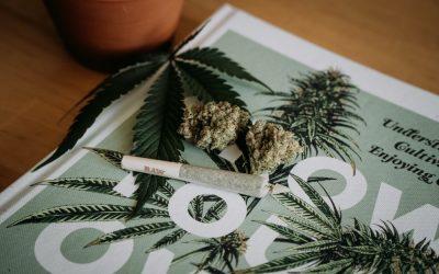 Les 10 Meilleurs Livres Sur La Culture De Cannabis En Français (2021)