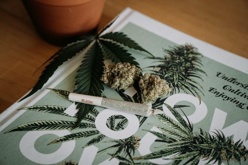 Meilleurs livres sur la culture de cannabis