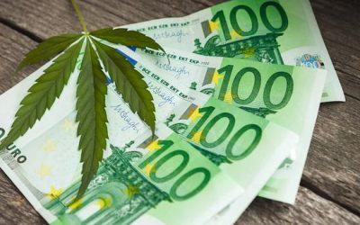 Est-il Rentable de Cultiver Votre Propre Cannabis ?