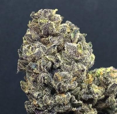 Wedding Cake - Meilleures variétés de cannabis