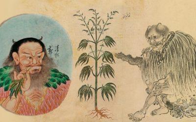 Histoire Du Cannabis : De La Préhistoire À Nos Jours
